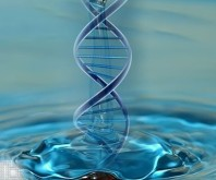 DNA_water